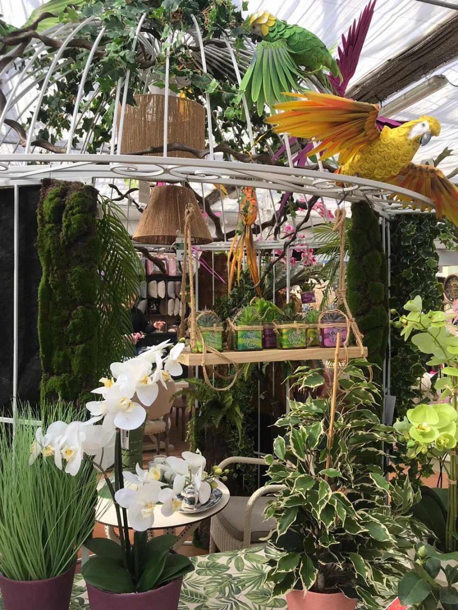Immagini Piante E Fiori aria di primavera al green center matteucci: tra piante e